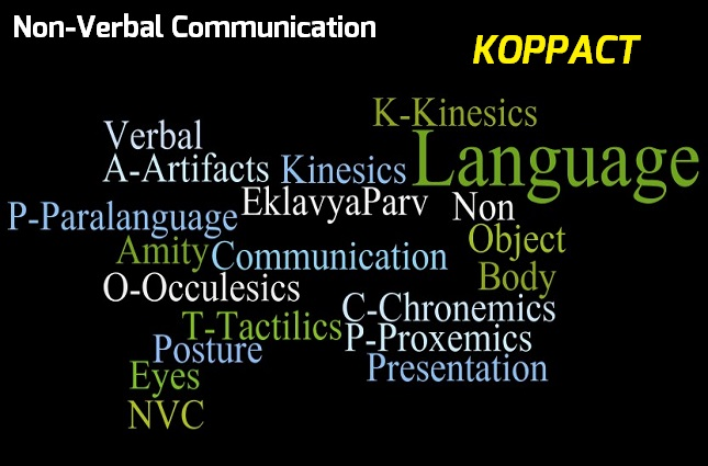 Non Verbal Communication Knowing Koppact Eklavyaparv Hall wrote regarding the american's viewpoint of time in the business world, the schedule is sacred. chronemics is one of those nonverbal channels of communication, and their treatment of time illustrates their perspective of time. eklavyaparv
